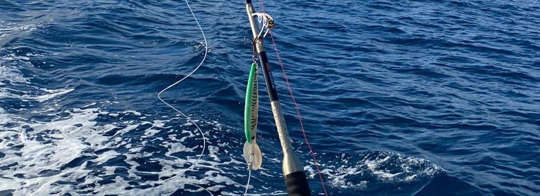 Fisherman´s Partner Angelruten ➔ Meeresruten kaufen